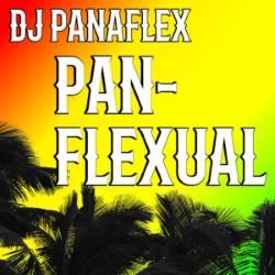 DJ Panaflex - Panflexual